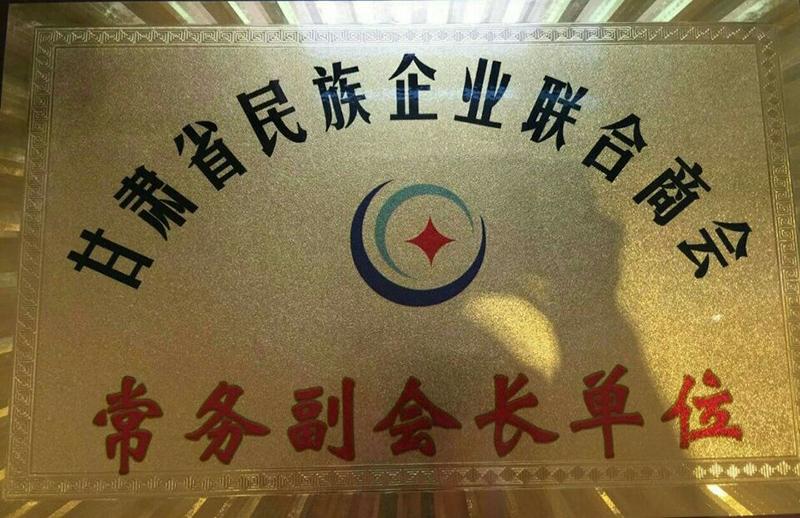 甘肃省民族企业联合商会常务副会长单位