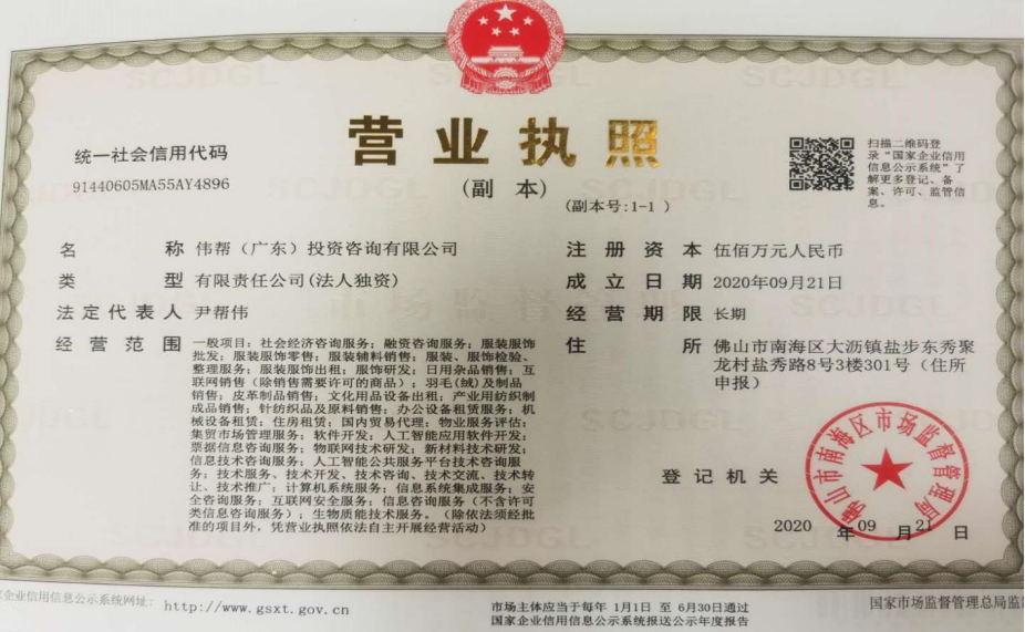 伟帮(广东)投资咨询有限公司