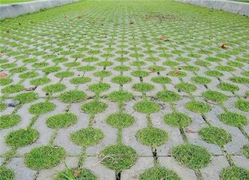 湖北植草磚有哪些特點?