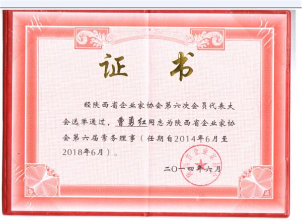 陕西省企业家协会第六届常务理事