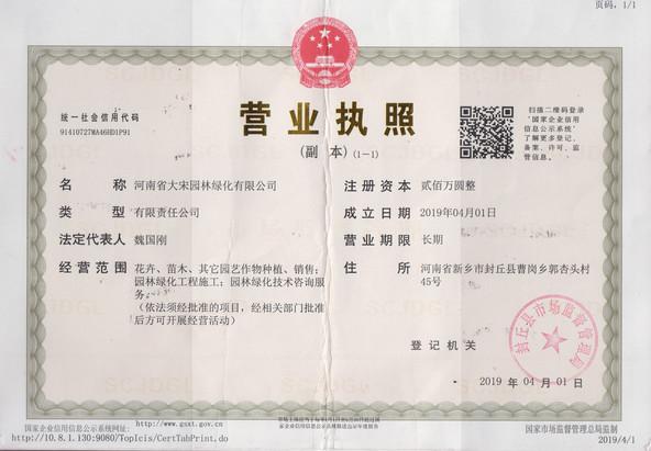 河南省大宋园林绿化有限公司营业执照