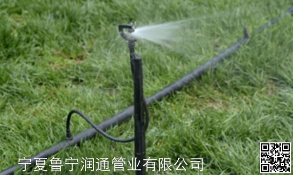 固原PE园林绿化管