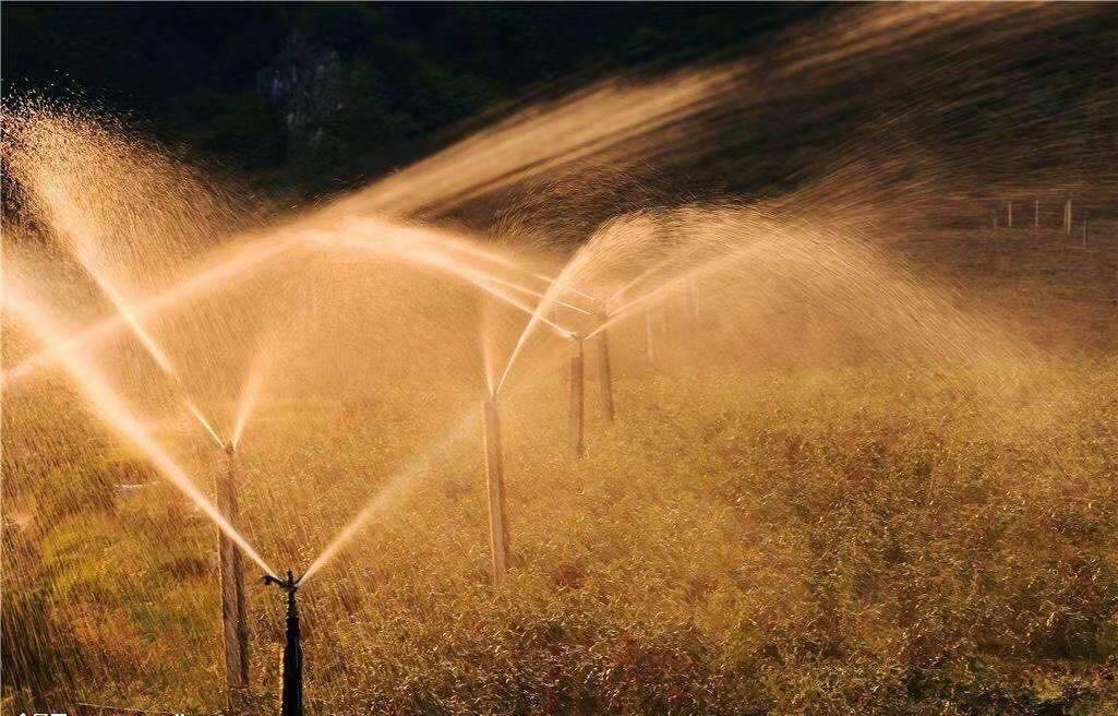 宁夏节水绿化管