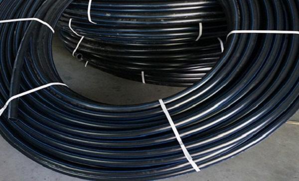 宁夏绿化管