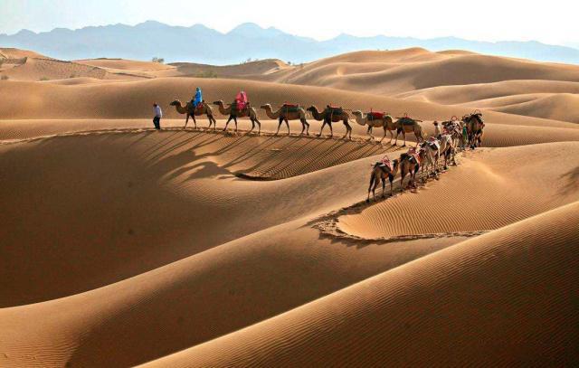 宁夏沙漠拓展训练公司