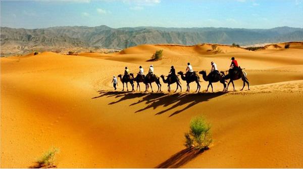 宁夏企业为什么要去沙漠拓展员工培训