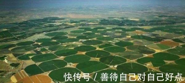 """海水取之不尽,用来灌溉沙漠会怎样看看国外进行的""""后果""""!"""