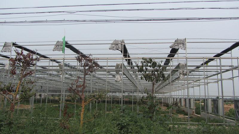 西安钢结构大棚工程