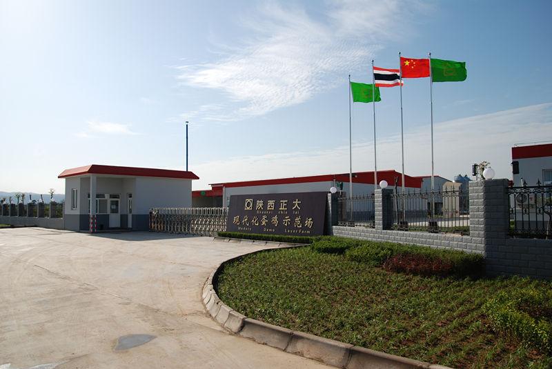 三元正大饲料厂钢结构厂房施工案例