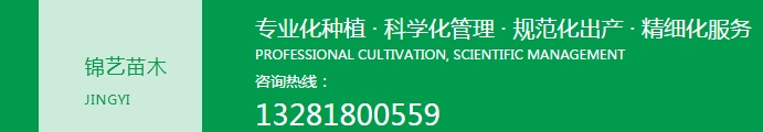 成都绿化苗木养护工程
