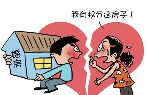 婚姻关系和继承纠纷案例