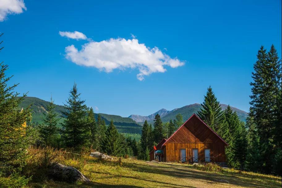 揭秘丨木结构建筑为何成为当今流行的装配式建筑?
