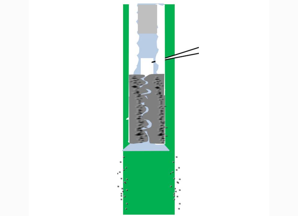 四川天然气井筒解堵剂(WZJ017)