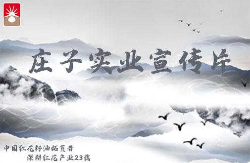 新疆庄子实业宣传片