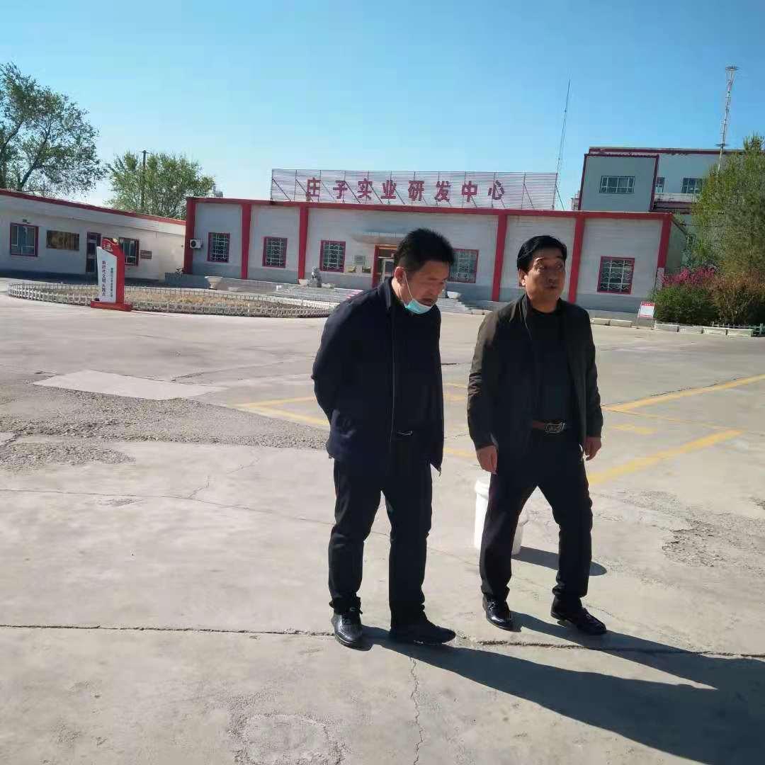 新疆红花籽油功效
