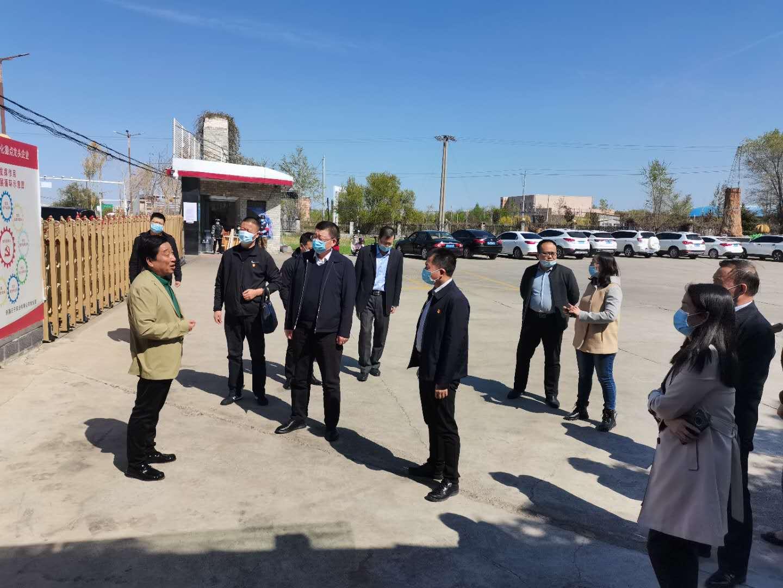 新疆红花籽油价格多少钱一斤