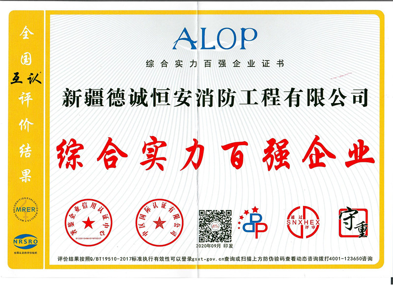 综合实力百强企业证书