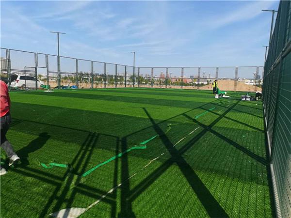 榆林市科创新城人草草坪足球场项目