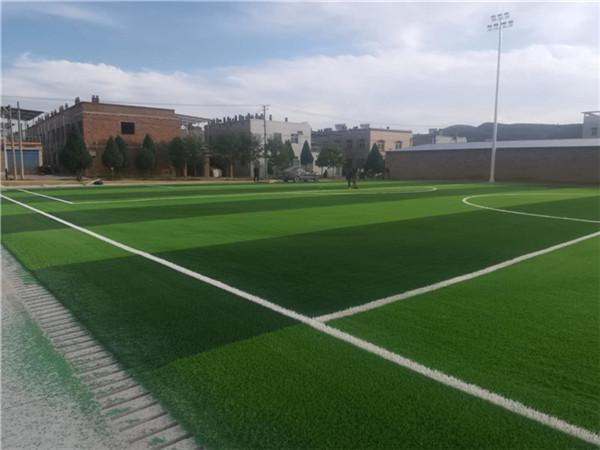 榆林市镇川镇镇府人造草坪足球场项目