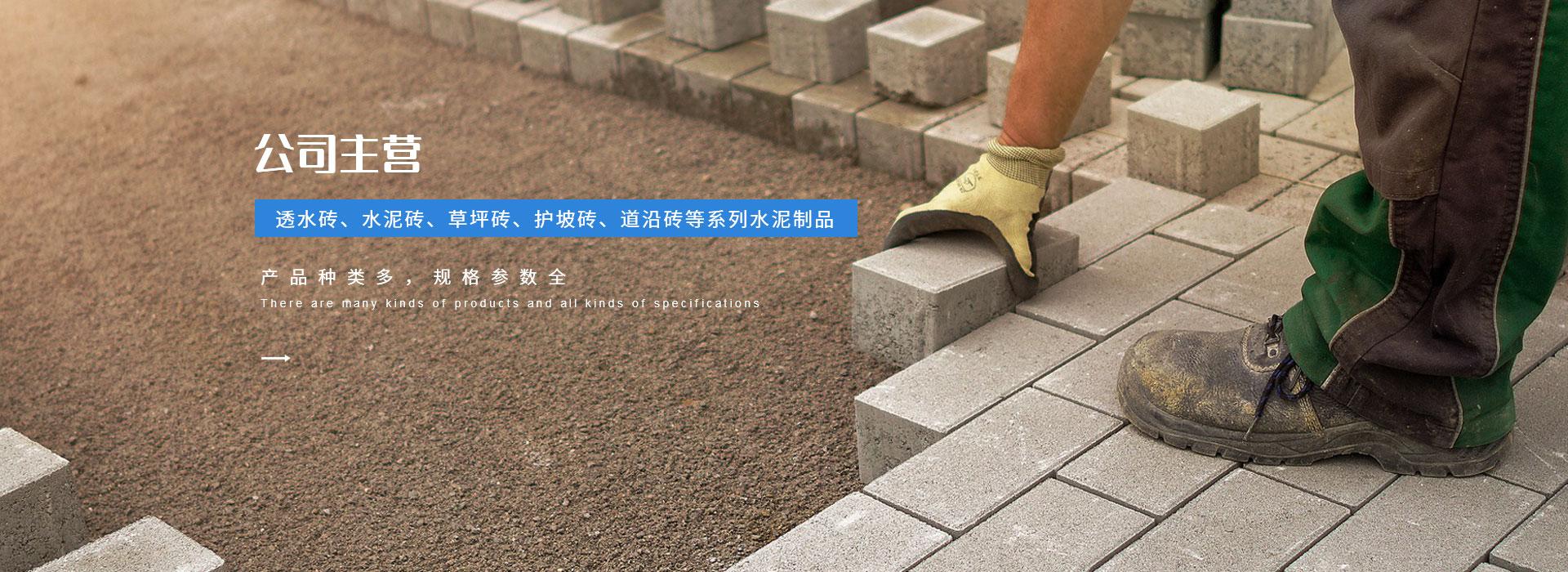 陕西水泥实心砖