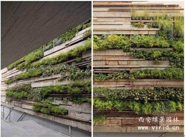 西安绿植墙工程