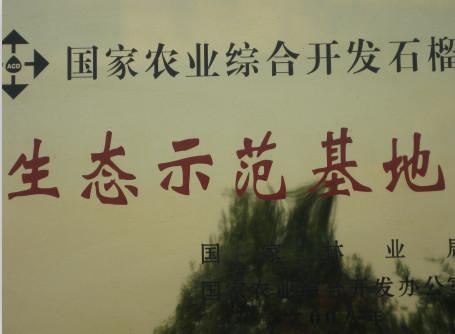 石榴生态示范基地