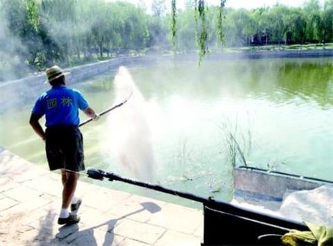 河北白石灰 污水处理水产养殖用石灰粉批发