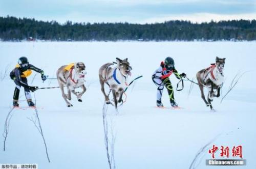 """2019冬博会主宾国确定为芬兰 将展示全球""""冰雪力量"""""""