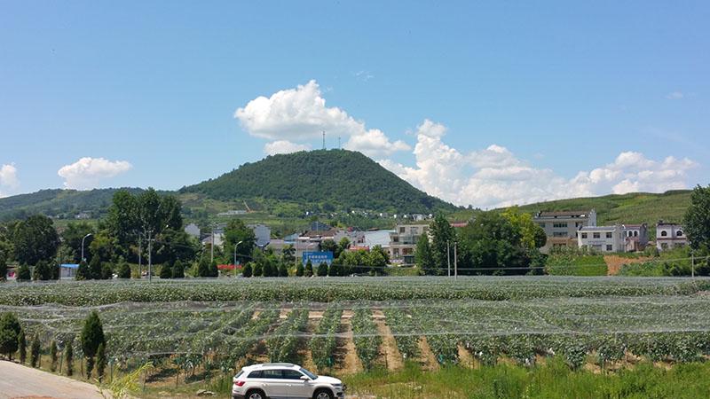 云南1000亩葡萄灌溉工程