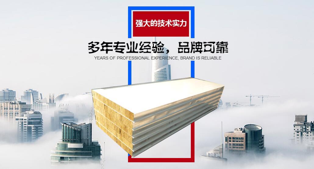 聚氨酯净化彩钢板