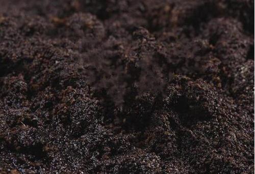 地污染调查与评估
