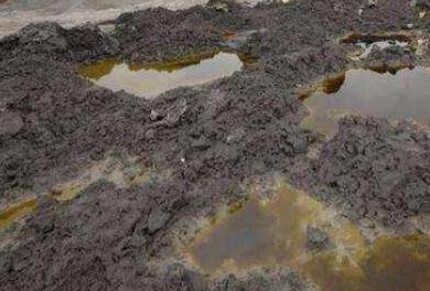 土壤被污染的话,会造成严重的一些问题和影响!