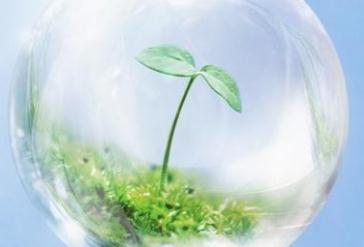 大家知道环境承载力是什么吗?分为哪些部分?