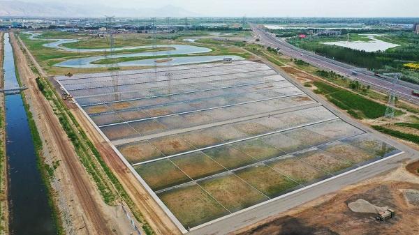 典农河流域平罗段(三排庄)水环境治理人工湿地项目