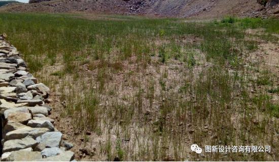 我国地质环境和地理环境比较复杂