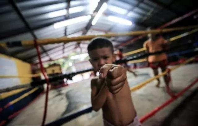 成都青少儿拳击