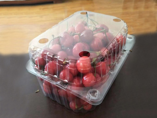 吸塑水果包装盒生产