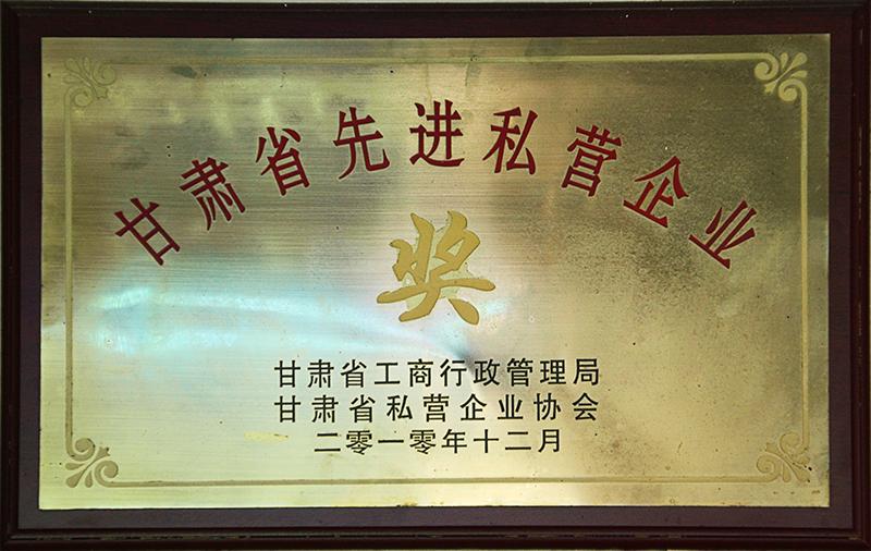 甘肃省先 进私营企业