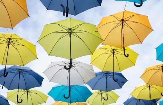 生活小妙招——雨伞怎么保养?热水壶的异味该怎样处理?