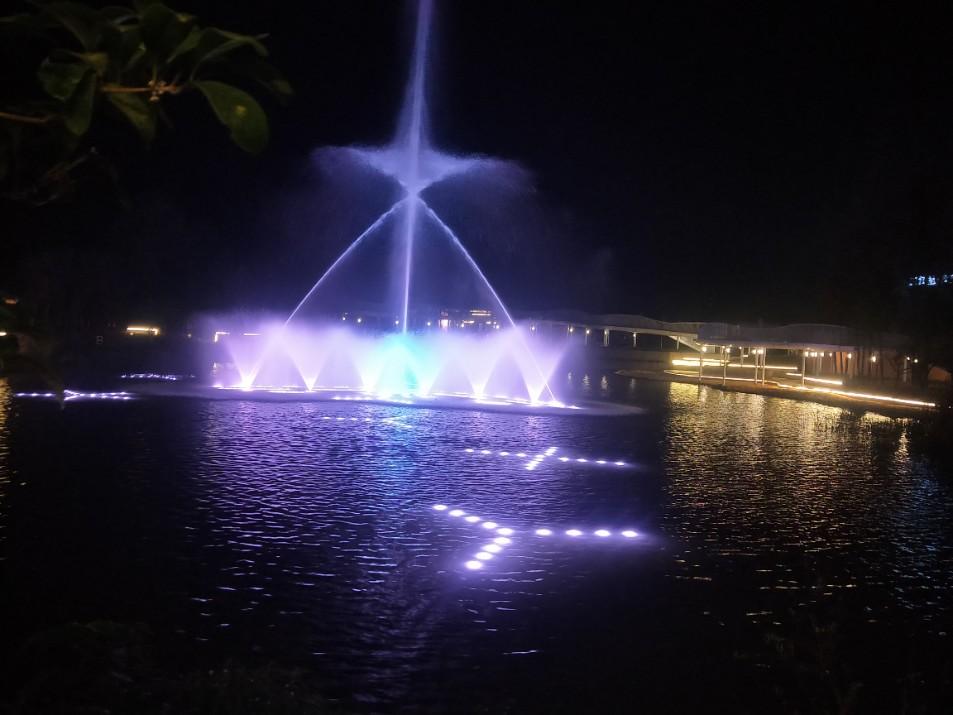 成都桂湖公园大型湖面音乐喷泉------ 四川广场音乐喷泉公司