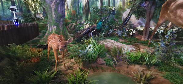 劳山国 家森林公园沙盘模型项目