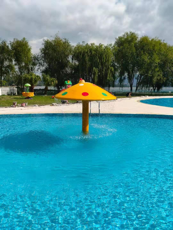 西昌邛海宾馆游泳池设备安装工程