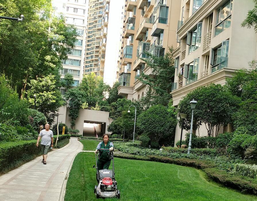 四川绿化养护公司