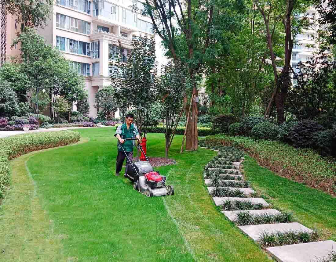 成都绿化养护工程