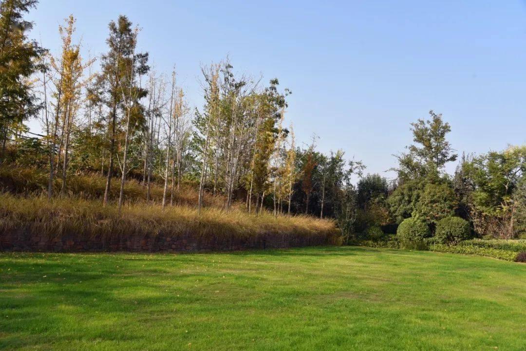 关于成都绿林养护实用技能第三期