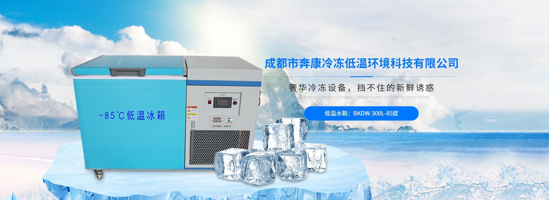 四川低温冰箱