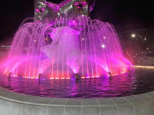 看完你就知道,四川大型音乐喷泉是怎样设计的了!