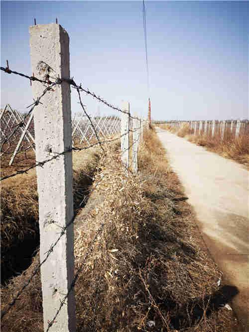 西安果园围杆批发