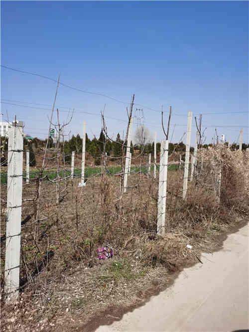 西安场地围杆生产