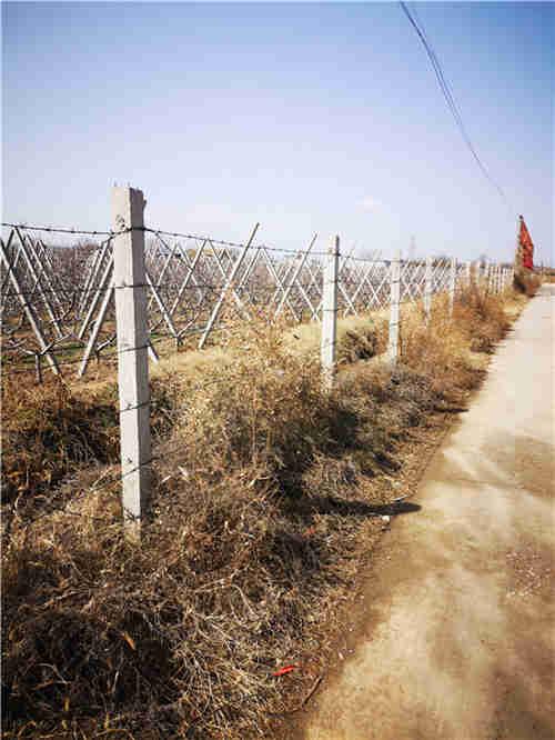 西安果园围杆生产